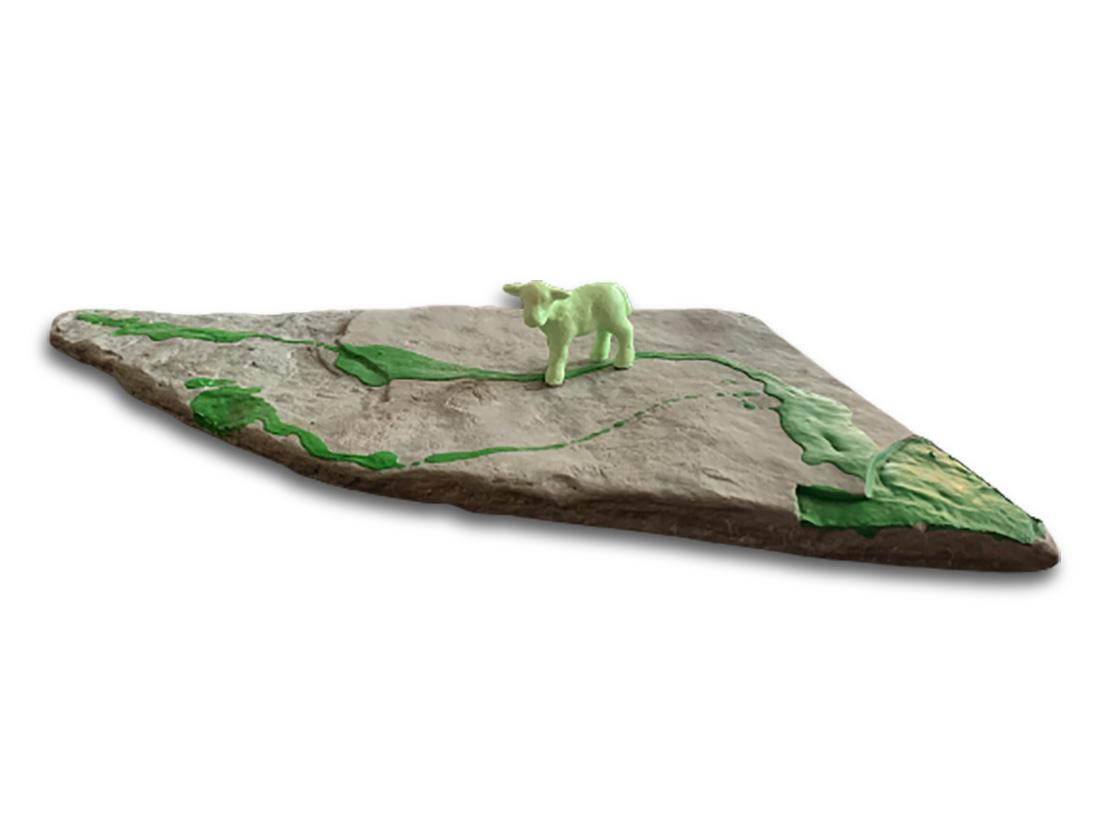 una pecorella